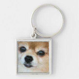 Papillon Puppy Square Keychain