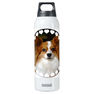 Papillon 16 Oz Insulated SIGG Thermos Water Bottle