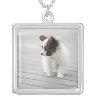 Papillon Silver Plated Necklace