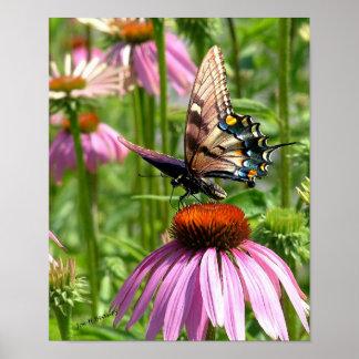 papillon sur la fleur print