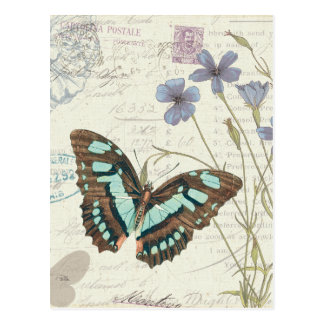 Papillon Tales Postcard