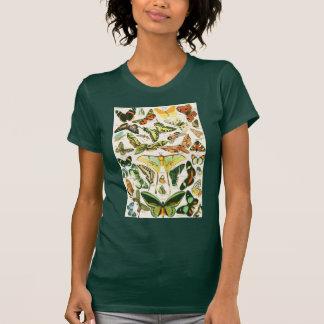 Papillons Shirts