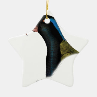 papuan lorikeet parrot, tony fernandes ceramic star decoration