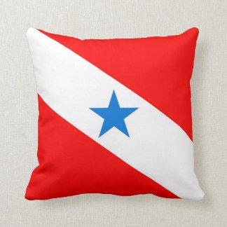 Para Brazil flag province region symbol Cushion