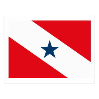 Para Flag Postcard