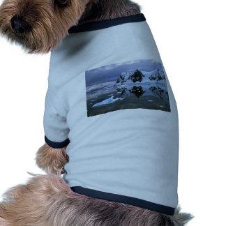 Paradise Bay, Antarctica Dog Tshirt