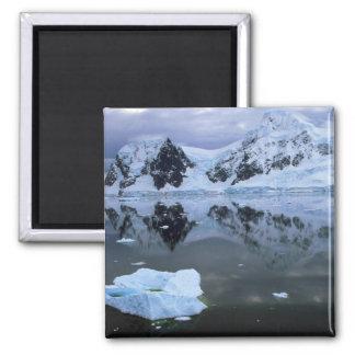 Paradise Bay, Antarctica Magnet