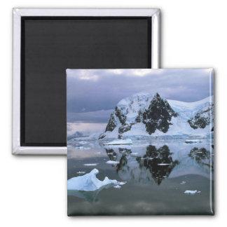 Paradise Bay, Antarctica Magnets