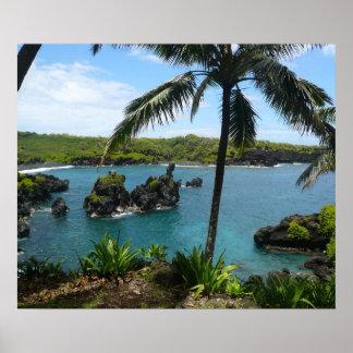 Paradise Beach - Maui, Hawaii Poster