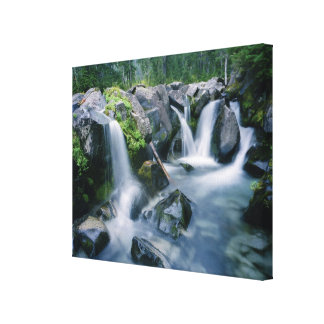 Paradise Creek flows down slopes of Mount Canvas Print