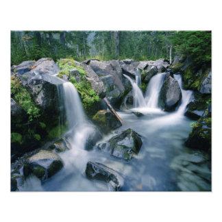 Paradise Creek flows down slopes of Mount Photo Print