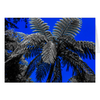 Paradise fern tree card