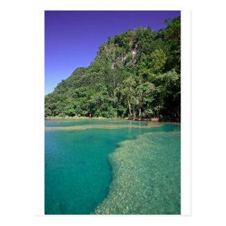 Paradise green lagoon Semuc Champey Guatemala Postcard