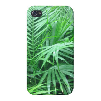 Paradise palm iPhone 4 cases