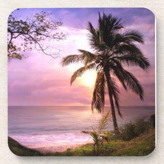 Paradise Palm Tree Coasters