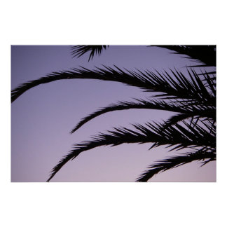 Paradise Palm Tree Sunset Poster