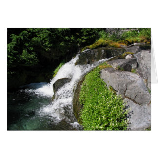 Paradise Park, Mount Rainier National Park Greeting Card
