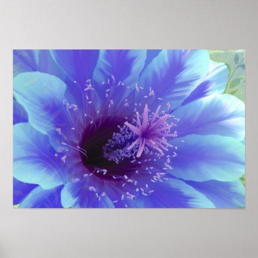 Paradisum tropical flower hibiscus print nature