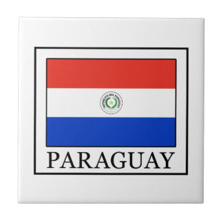 Paraguay Small Square Tile
