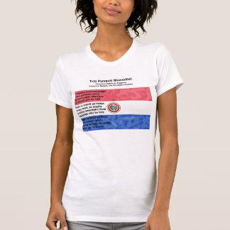 Paraguay - Tetã Paraguái Momorãhéi T-Shirt