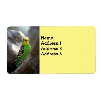 """Parakeet Bird Address Labels 2""""l x 3.75""""w"""