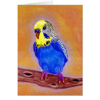 Parakeet Bird Blank Greeting Card
