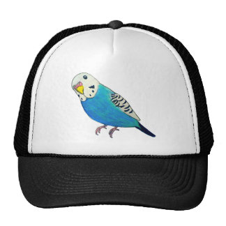 Parakeet Drawing Cap