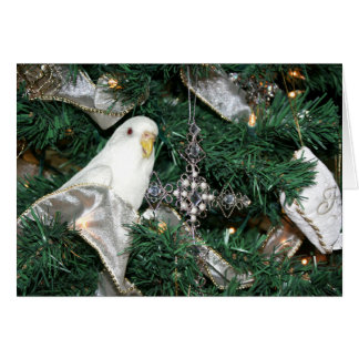 Parakeet in a Christmas tree Card