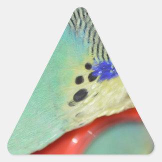 Parakeet looking in mirror triangle sticker