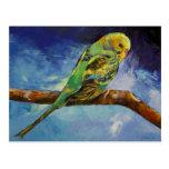 Parakeet Painting Postcard