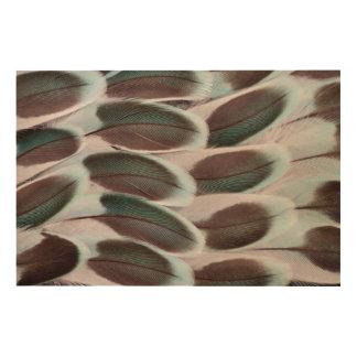 Parakeet Wing Feather Design Wood Print