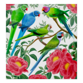 Parakeets and Peonies Poster