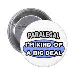 Paralegal...Kind of a Big Deal Pins