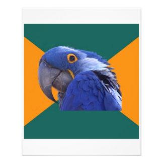 Paranoid Parrot Bird Advice Animal Meme Flyer Design