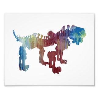 pareiasaurus skeleton photo