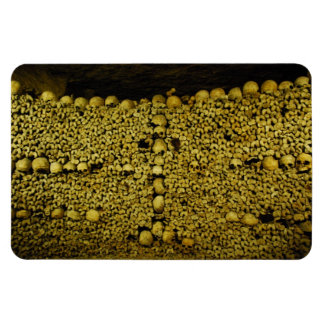 Paris Catacombs Skulls and Bones Rectangular Magnets