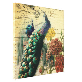 paris fashion girly flower vintage peacock stretched canvas print