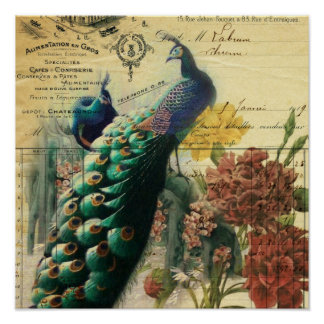 paris fashion girly flower vintage peacock poster