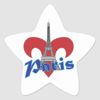 Paris Fleur de Lis Star Sticker