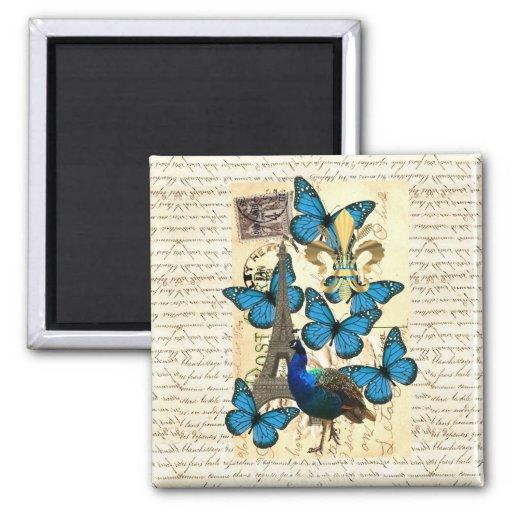 Paris, peacock and butterflies fridge magnets