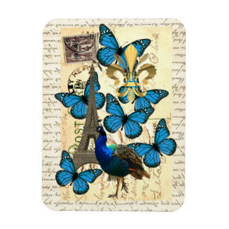 Paris, peacock and butterflies magnets