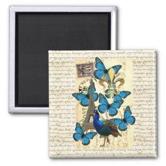 Paris, peacock and butterflies square magnet