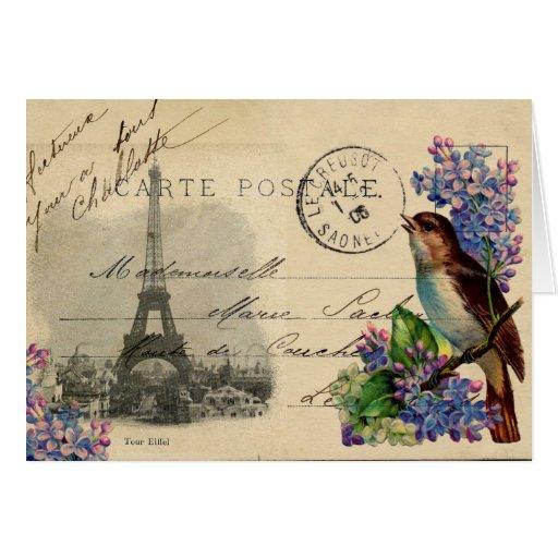 Paris Postcard Bird on Lilacs Card