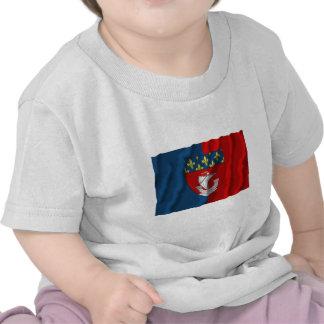 Paris waving flag shirt