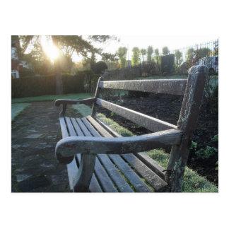 Park Bench at Sunset Postcard