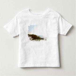Park bench overlooking Atlantic Ocean Toddler T-Shirt