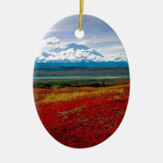 Park Brilliant Colors Of Denali Alaska Christmas Ornament