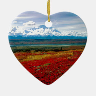 Park Brilliant Colors Of Denali Alaska Christmas Ornament
