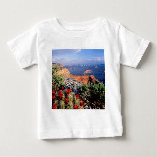 Park Claret Cup Cactus Grand Canyon Tee Shirt
