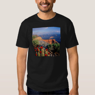 Park Claret Cup Cactus Grand Canyon Tshirt